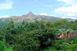 Vacation Homes to Rent in Tanzania